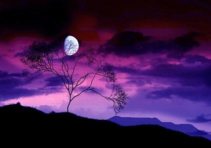 purple sky picture