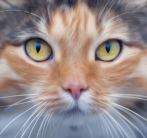 realistic cat face design vector