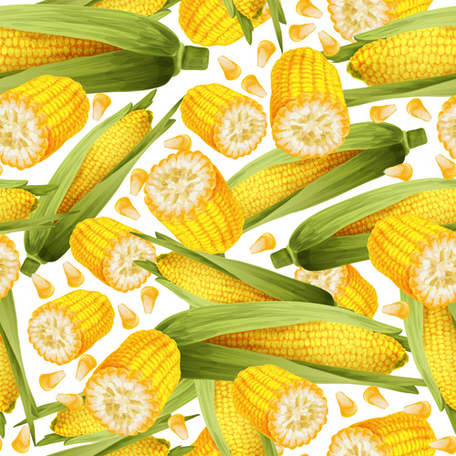 corn stalk template - corn free vector download 118 free vector for commercial