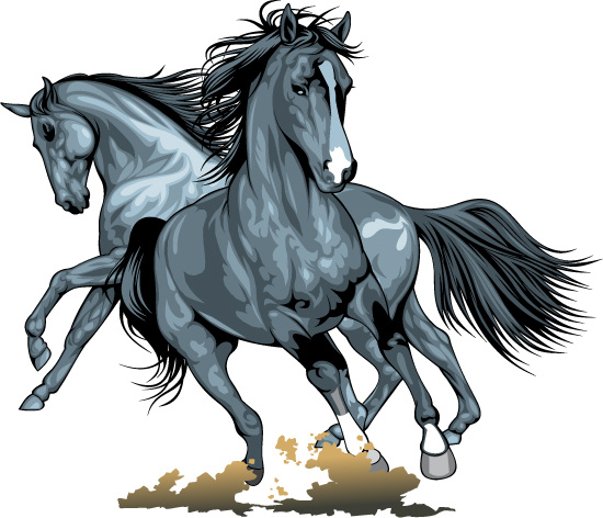 realistic running horses vector graphics