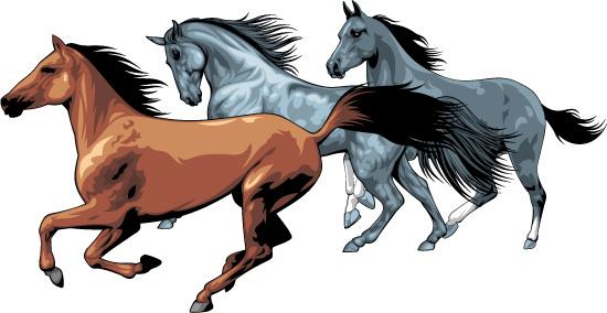 realistic running horses vector graphics
