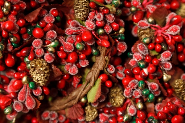 red and green berries