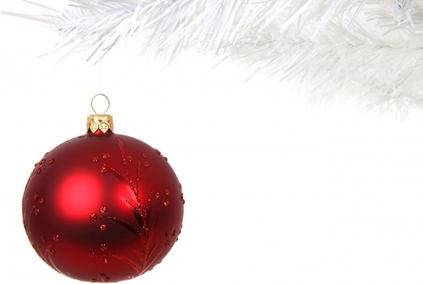 red bauble on branch