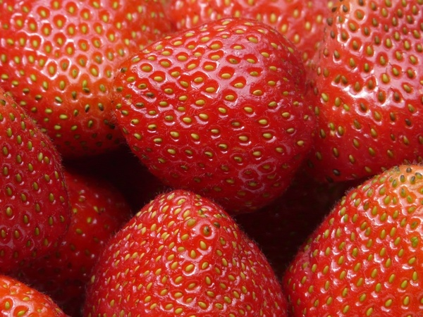 red strawberries fruits