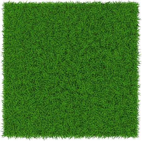 refreshing green grass background vector free vector in encapsulated postscript eps eps vector illustration graphic art design format format for free download 4 49mb refreshing green grass background