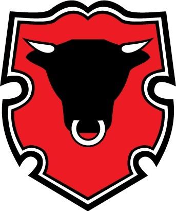Rigas Miesnieks logo