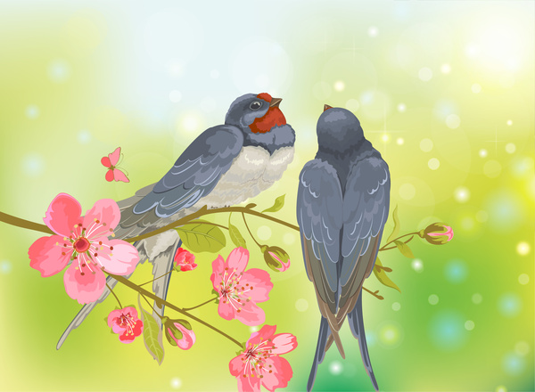 romantic birds on tree branch