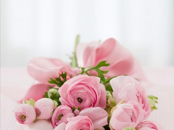 roses bouquet congratulations