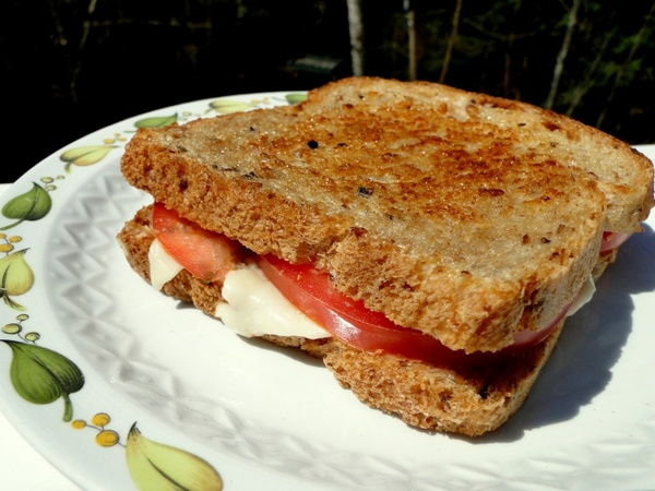 sandwich food grilled cheese