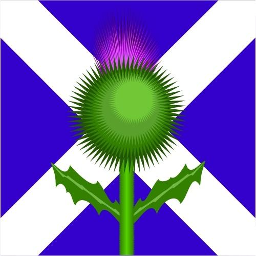 Scottish Thistle and flag