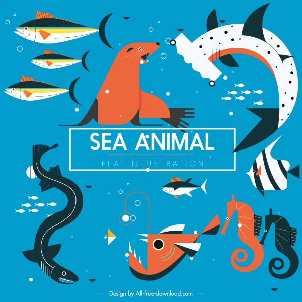 sea animals background fishes species seal seahorse sketch