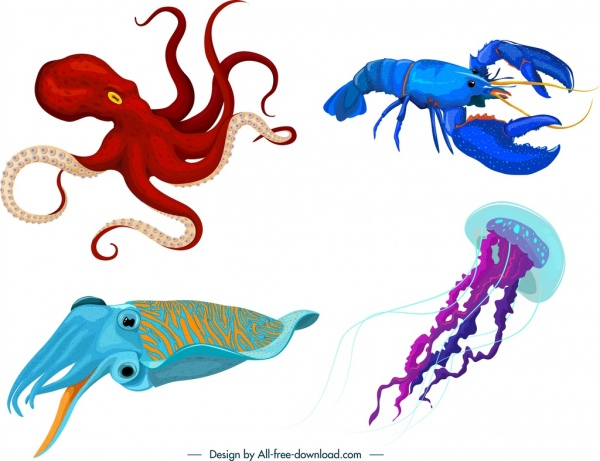 sea animals icons octopus lobster squid jellyfish outline