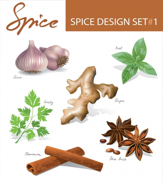 spices icons shiny colored modern design