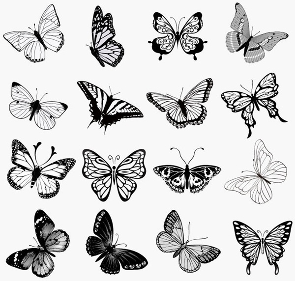 0276c26730fec Set of Butterflies Silhouettes Vector Illustration Free vector 2.92MB