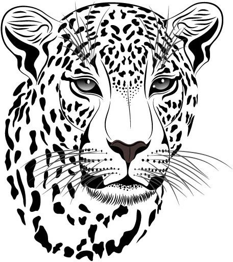 Chester Cheetah Illustrations On Behance: Free Chester Cheetah Cheetos Free Vector Download (28 Free
