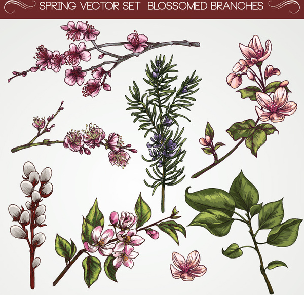 Vintage flower circle free vector download (22,114 Free ...