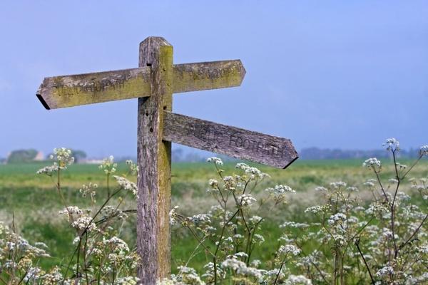 signpost wooden pointer