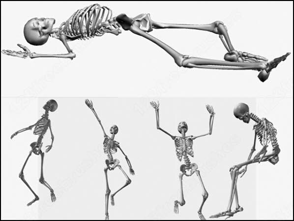 skeleton brush