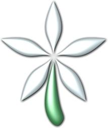 Snowelianta