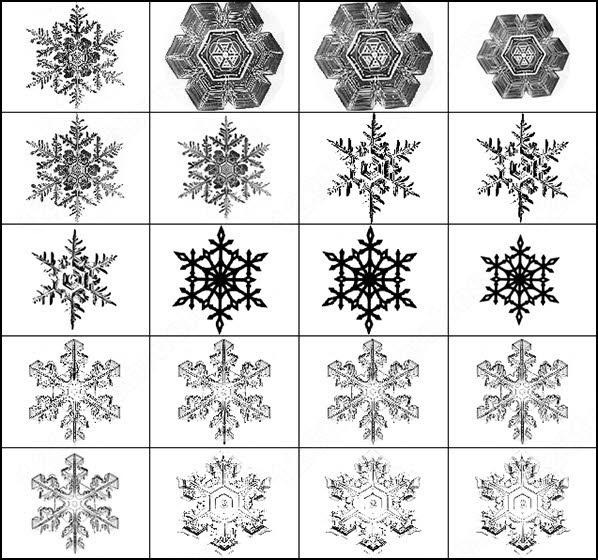 snowflakes. set contains 22 brush