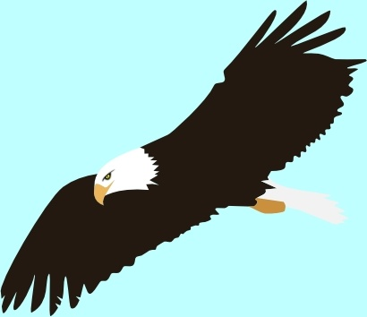 Soaring Eagle Clip Art Free Vector In Open Office Drawing