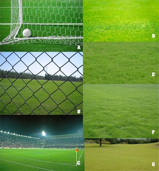 soccer field turf 1