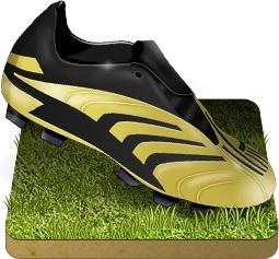 Soccer shoe grass