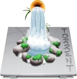 Software Torrent