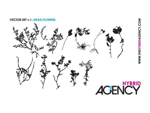 Some pretty dead dry flowers silhouettes free vector in some pretty dead dry flowers silhouettes mightylinksfo