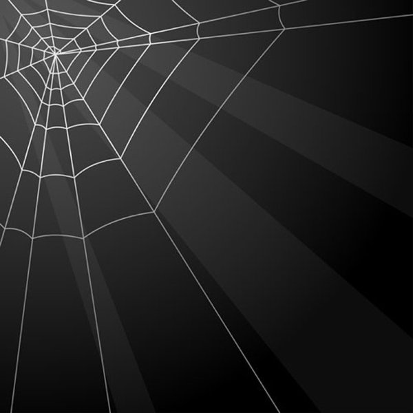 Spiderweb Free Vector Download 13 Free Vector For