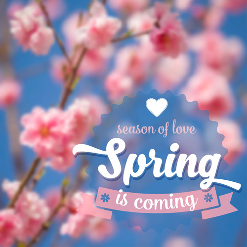 spring flower blurred background vector set