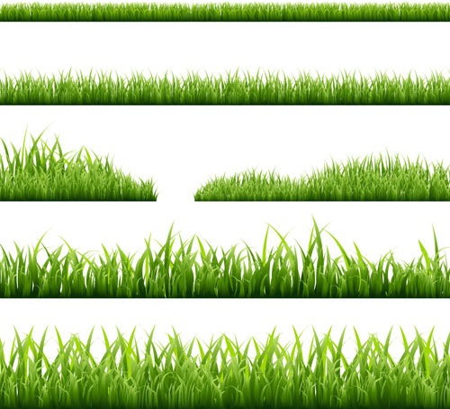 spring grass borders vector set free vector in encapsulated postscript eps eps vector illustration graphic art design format format for free download 1 05mb spring grass borders vector set free