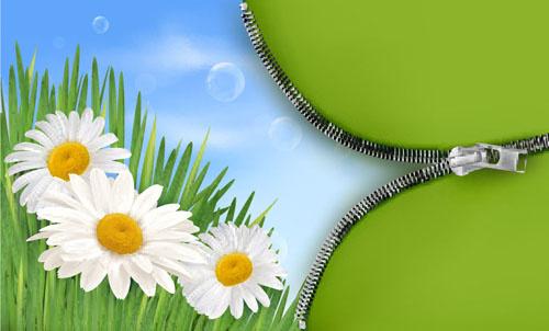 spring green grass background vector