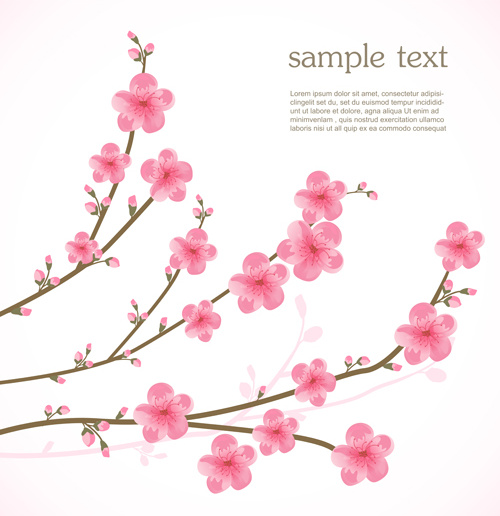 spring pink cherry vector background
