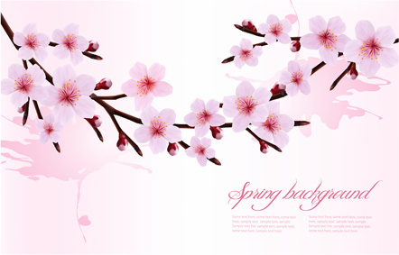 spring pink flower vector background graphics