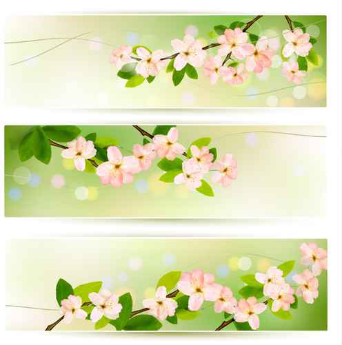 Spring Pink Flowers Banner Vector Free Vector In Encapsulated