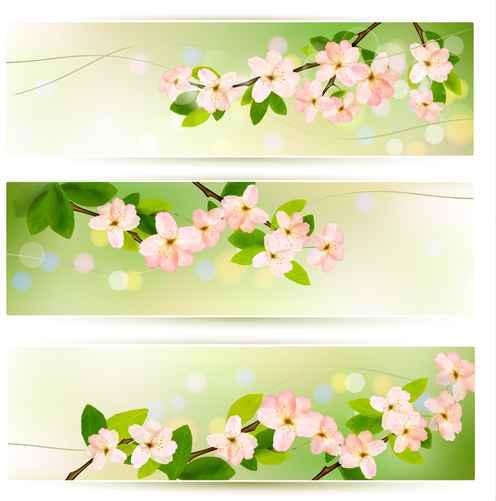 spring pink flowers banner vector