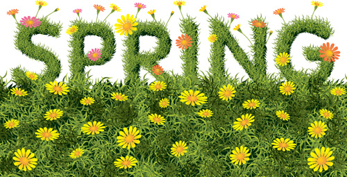 spring yellow flowers art background