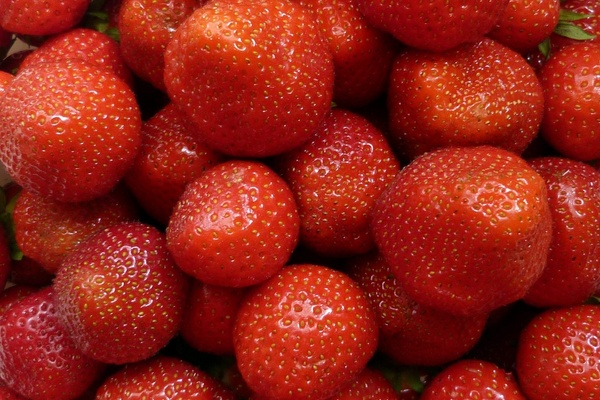 strawberry fruits fruit