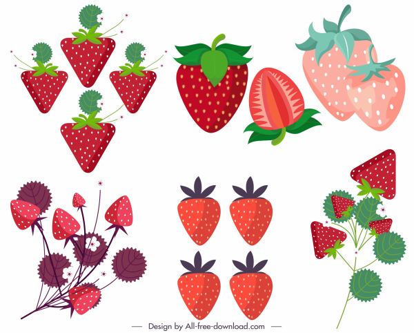 strawberry icons colored flat modern sketch