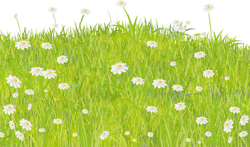 summer grass vector background free vector in encapsulated postscript eps eps vector illustration graphic art design format format for free download 2 17mb summer grass vector background free