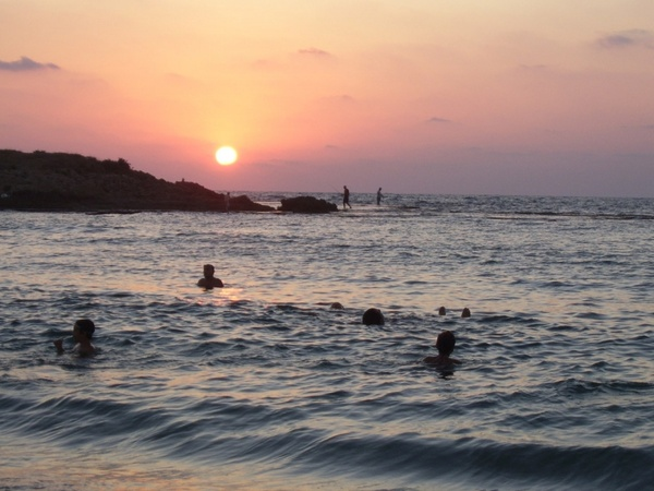 swimming in sunset