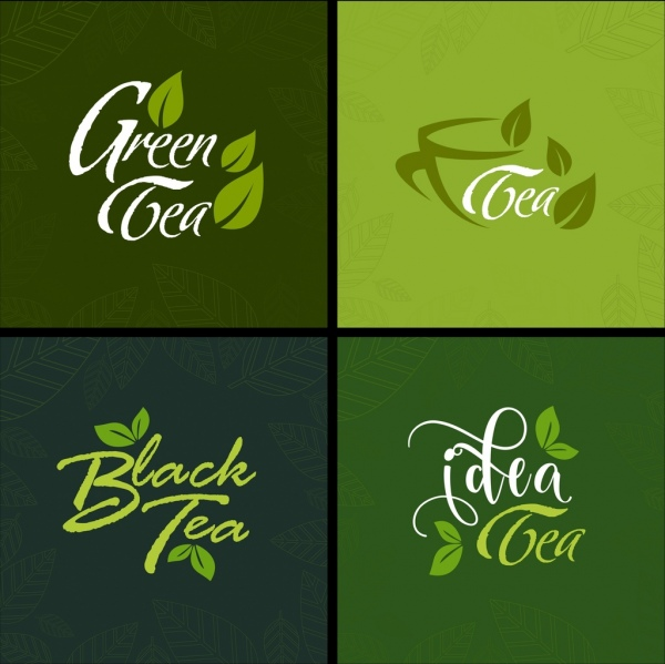 tea advertising sets green leaves icons calligraphic decoration