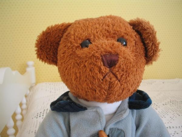 teddy bear brown clothing