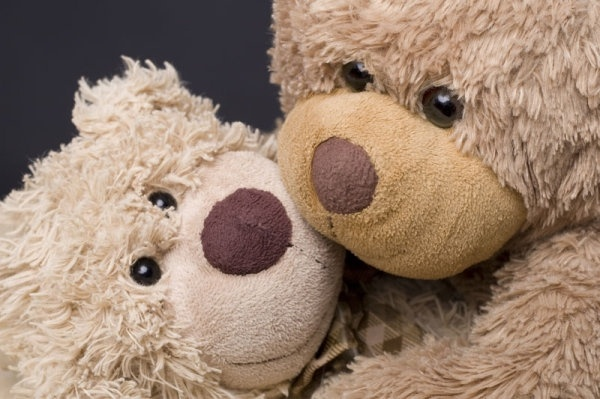 teddy bear toys 02 hd pictures