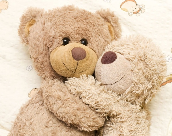 teddy bear toys 03 hd pictures