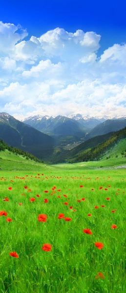 the beautiful outskirts of scenery picture