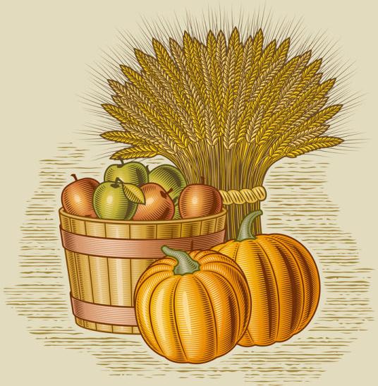 Image result for harvest cartoon images