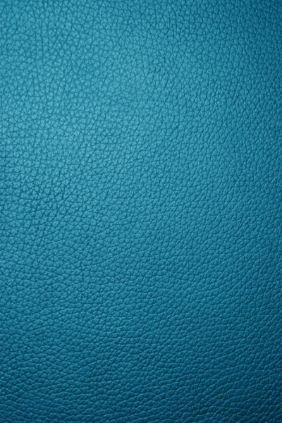 the texture of the leather 04 definition picture