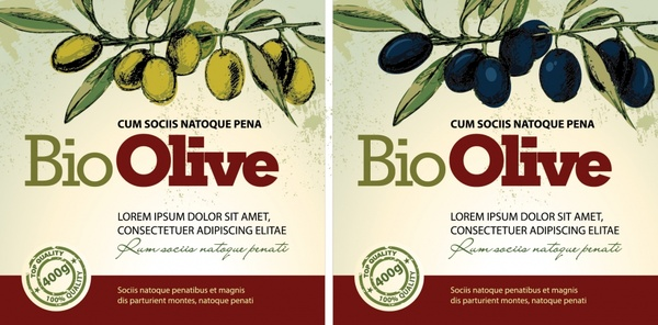 olive oil label templates colored classical fruits decor